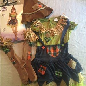Ladies scarecrow costume